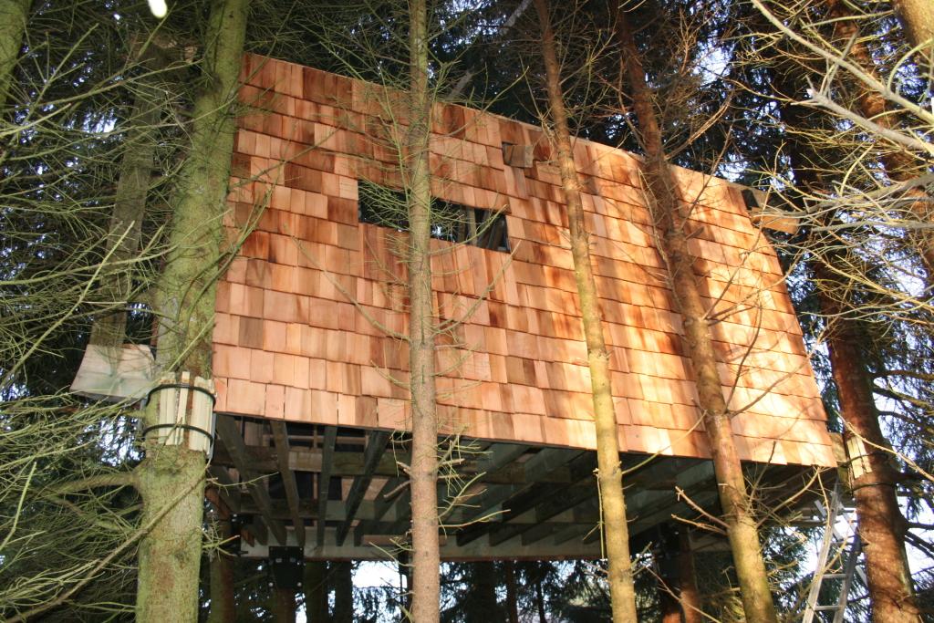 cabane perch e dans 7 arbres r gion li goise proche des sommets de la belgique cabanade. Black Bedroom Furniture Sets. Home Design Ideas